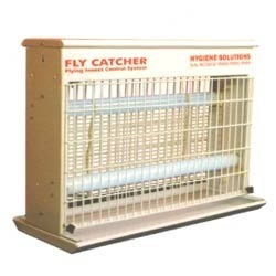 Fly Catchers