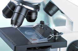 Histopathology Stains Analysis