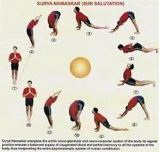 yoga  basic yoga training service provider from coimbatore