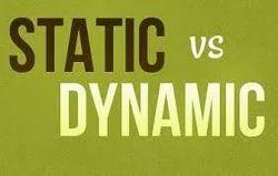 Dynamic & Static Website Design