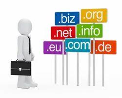 Domain Name Renewal Service