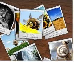 Flash Photo Galleries