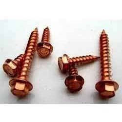 Copper Screw