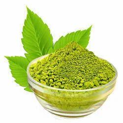 Vasaka Plant Dry Extracts