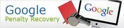 SEO New Delhi, New Delhi - Service Provider of Google Penalty Recovery