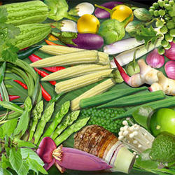 Exotic Vegetables in Delhi - Suppliers, Wholesale Prices & Dealers ...
