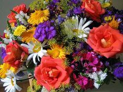 Floral Fragrance Oil