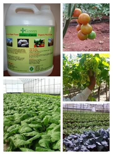 Dr Green Hydroponic Nutrients Solution, Packaging Type