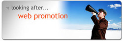 Website Promotions Services
