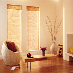 Chick Blinds