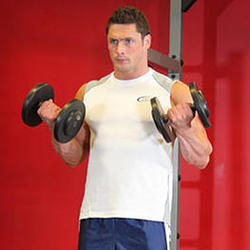 Dumbbell Biceps Curl Fitness Club