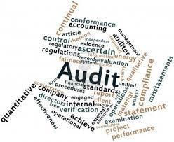 Statutory And Audit Services