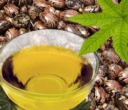 Ghanshyam Chemicals 100 % Castor Oil