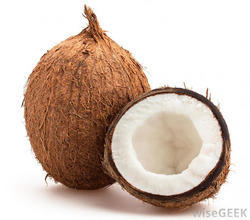 Coconut in Karur - Latest Price & Mandi Rates from Dealers in Karur