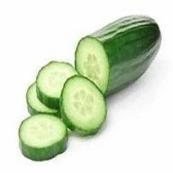Fresh Green Cucumber