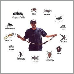 Pest Rodent Control Services