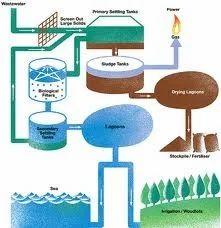Sewage Treatment Plant Activated Sludge Process Sewage