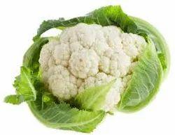 Cauliflower Vegetable Crops