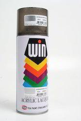 Aerosol Spray Paints Bright Sliver Shade Touch Up / No Brush