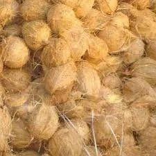 Pollachi Nature Fresh Coconut