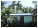 Cocoons Homestay