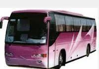 Domestic Travel Services