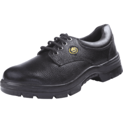 Bata Endura Low Cut Safety Shoes