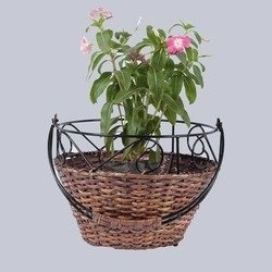 Cane Round Hanging Planter Basket
