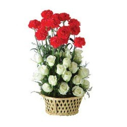 Red and White Flower Baskets