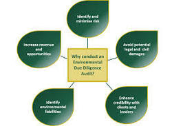 Due Diligence Audits