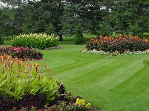 High Quality Gardening Landscaping Services
