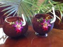 Coconut Shell Cocktail Cup