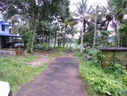 Land For Sale Thiruvankulam