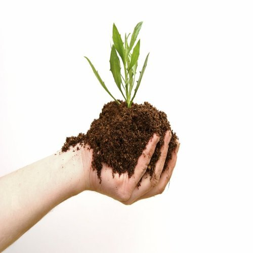 Organic Fertilizers at Best Price in India