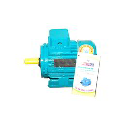 AC Induction Electric Motor