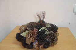 Natural Black Pine Cone with Leaves