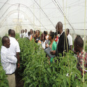 Agricultural Implementation Services
