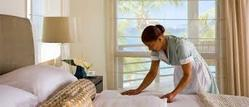 Paying Guest Accommodations Service