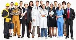 Overseas Job Consultant