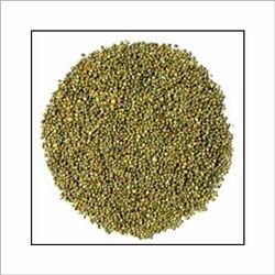 Bajara Grain