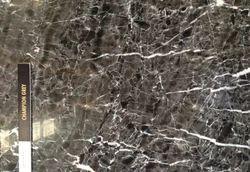 Black Champion Gray Granite, For Flooring, Thickness: 20 mm