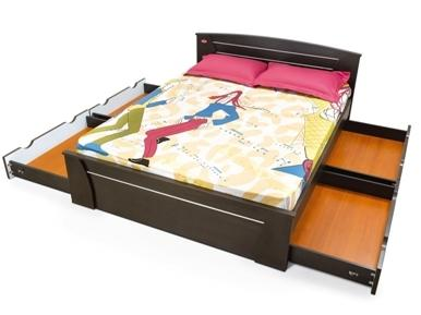 Kurl On Furniture Berlin Wenge Manufacturer From Bengaluru