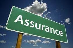 Financial Assurance Services