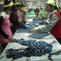 Garment Consultancy Services