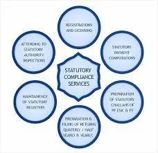 Statutory Compliance Service