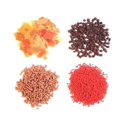 Fish Food At Rs 75 Kilogram Aquarium Fish Food Id 4470839912