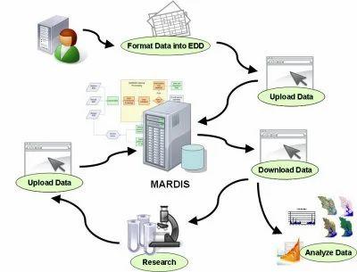 Database Management Service, Data Management - Tulyasys