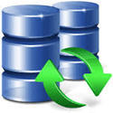 Database Services / Support
