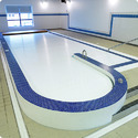 Shaped Swimming Pools