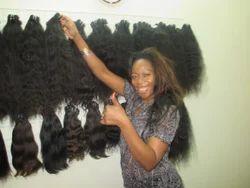 World Market Hair